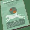Manual digital de Nutrición del Paciente con Cálculos de Cistina-Urato